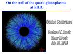 On the trail of the quark-gluon plasma at RHIC