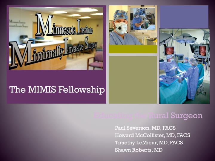 the mimis fellowship n.