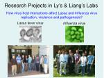 Lassa fever virus