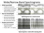Wide/Narrow Band Spectrograms