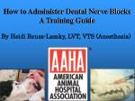 How to Administer Dental Nerve Blocks A Training Guide