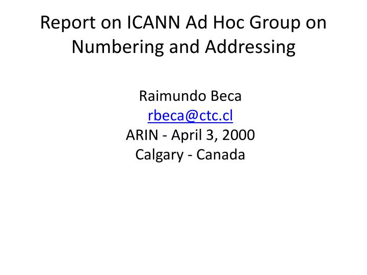 report on icann ad hoc group on numbering and addressing n.