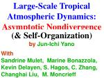 Large-Scale Tropical Atmospheric Dynamics: Asymptotic Nondivergence & Self-Organization