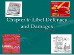 Chapter 6: Libel Defenses and Damages