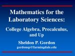 The Mathematics Curriculum