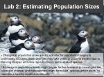 Lab 2: Estimating Population Sizes
