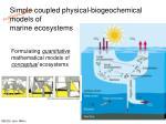 Simple coupled physical-biogeochemical models of  marine ecosystems