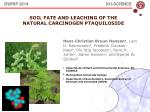 Soil Fate and leaching of the  natural carcinogen  ptaquiloside