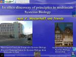 In  silico  discovery of principles in  multiscale  Systems Biology