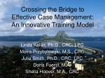 Crossing the Bridge to Effective Case Management: An Innovative Training Model