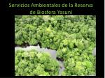 Servicios Ambientales de la Reserva de Biosfera Yasun í