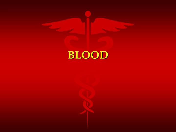 blood n.