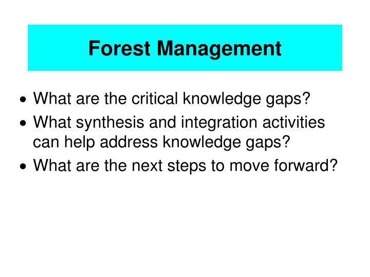 forest management n.