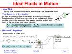 Ideal Fluids in Motion