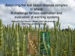 Assessing the leaf blotch disease complex in wheat: A challenge for loss estimation and