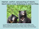 Habitat, conflict, and poaching of Asiatic black bears Ursus thibetanus in Central China