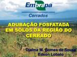 ADUBAÇÃO FOSFATADA EM SOLOS DA REGIÃO DO CERRADO