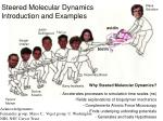 Steered Molecular Dynamics  Introduction and Examples