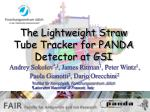 The Lightweight Straw Tube Tracker for PANDA Detector at GSI