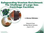 Safeguarding Uranium Enrichment: The Challenge of Large Gas-Centrifuge Facilities