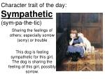 Character trait of the day: Sympathetic (sym-pa-the-tic)