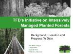 TFD's Initiative on Intensively Managed Planted Forests