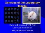Genetics of the Laboratory Mouse