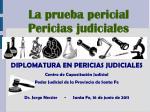 DIPLOMATURA EN PERICIAS JUDICIALES Centro de Capacitación Judicial