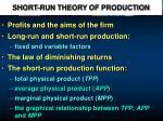 SHORT-RUN THEORY OF PRODUCTION