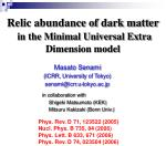 Relic abundance of dark matter in the Minimal Universal Extra Dimension model