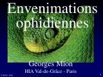 Envenimations ophidiennes
