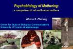 Psychobiology of Mothering: