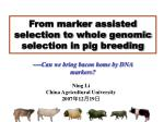 From marker assisted selection to whole genomic selection in pig breeding
