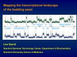 Mapping the transcriptional landscape of the budding yeast
