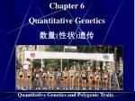 Chapter 6 Quantitative Genetics 数量 ( 性状 ) 遗传