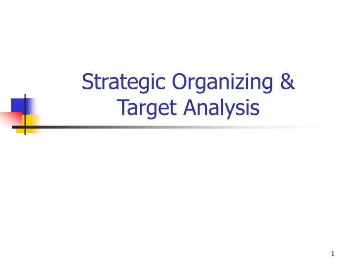 strategic organizing target analysis n.