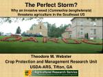Theodore M. Webster Crop Protection and Management Research Unit USDA-ARS, Tifton, GA