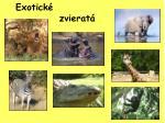 Exotické zvieratá
