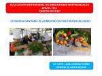 ESTRATEGIA SANITARIA DE ALIMENTACION Y NUTRICION SALUDABLE