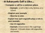 A Eukaryotic Cell is Like… Compare a cell to a common place.
