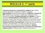 BOLILLA 2- 1° parte