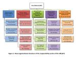 Figure 1: New organisational structure of the responsibility centre of the VR(L&T)