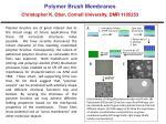 Polymer Brush Membranes Christopher K. Ober , Cornell University, DMR 1105253