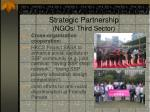 Cross-sector Collaboration and Strategic Partnership (NGOs/ Third Sector)