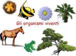 Gli organismi viventi
