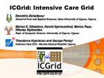 ICGrid: Intensive Care Grid
