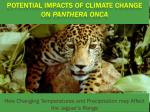 Potential Impacts of Climate Change on  Panthera Onca