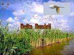 Delta  Dunării un ansamblu de ecosisteme
