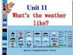 What ' s the weather like?