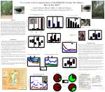 Acknowledgements UNM Hydrogeoecology Group NSF Grant DEB-9903973